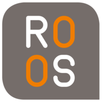 ROOS IT GmbH & Co. KG